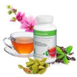 Чай Гербалайф для похудения и не только: состав, действие, как пить растительный травяной напиток?