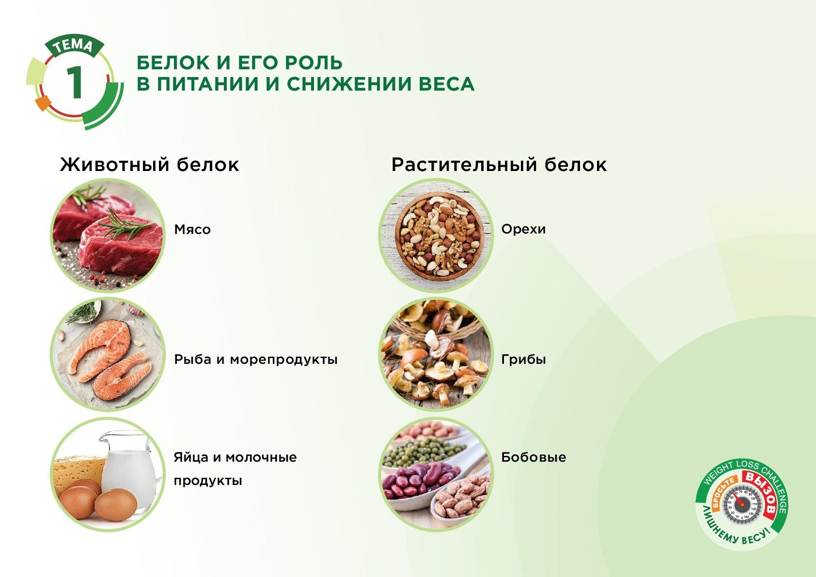 Животный белок Растительный